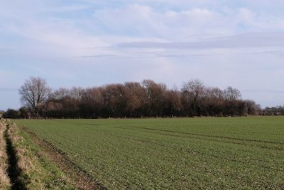 View of the reserve area from the West